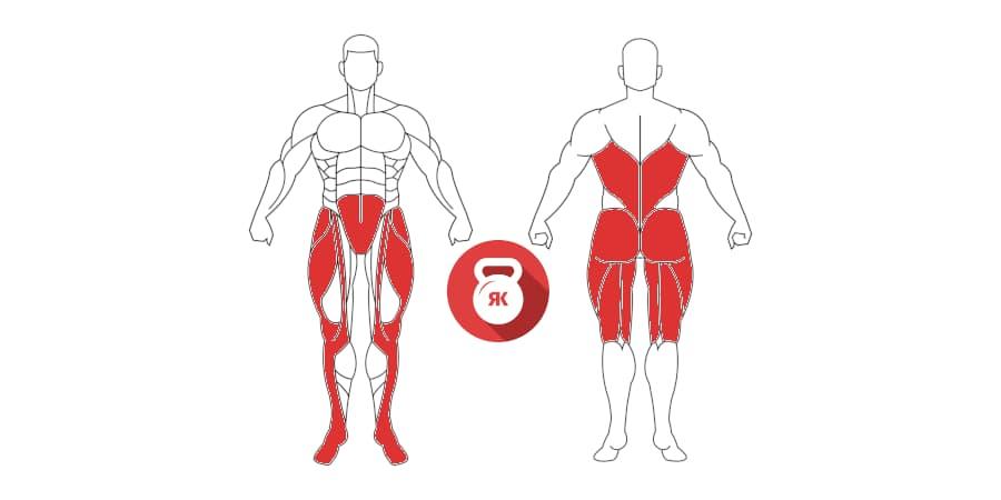 kettlebell swing musculos implicados