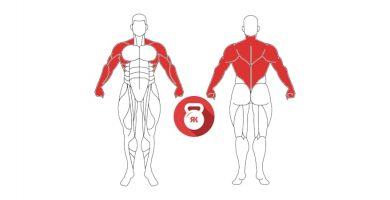 kettlebell row musculos implicados