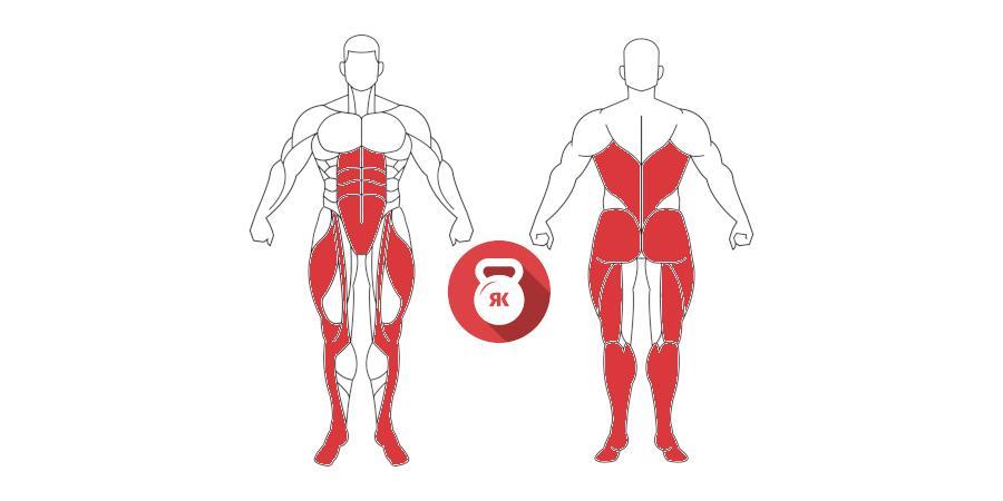 kettlebells pesas rusas cargada clean musculos implicados