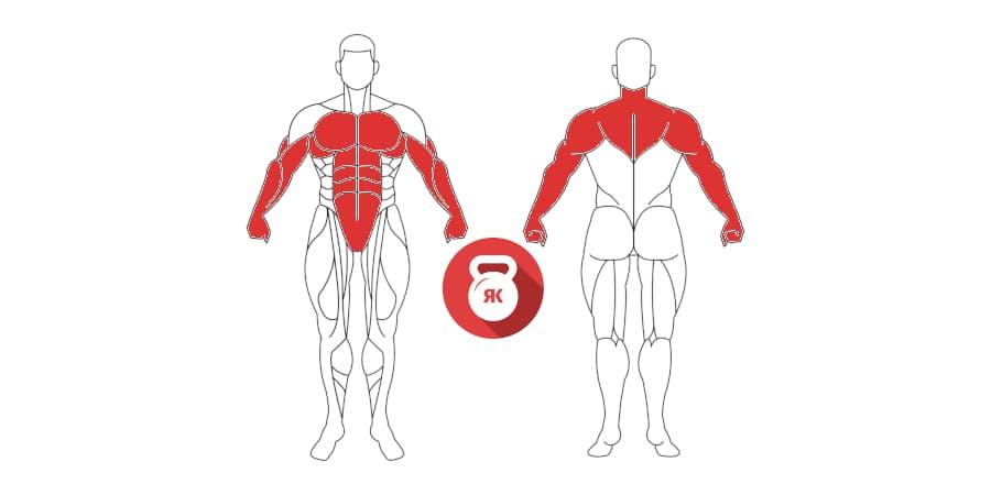 kettlebell push ups musculos implicados