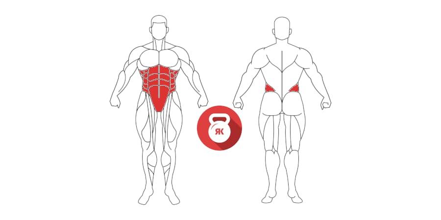 kettlebell cruches abdominales musculos implicados
