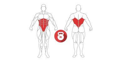 kettlebell bottom up cuerpo musculos implicados