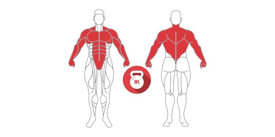 kettlebells pesas rusas renegade row musculos implicados